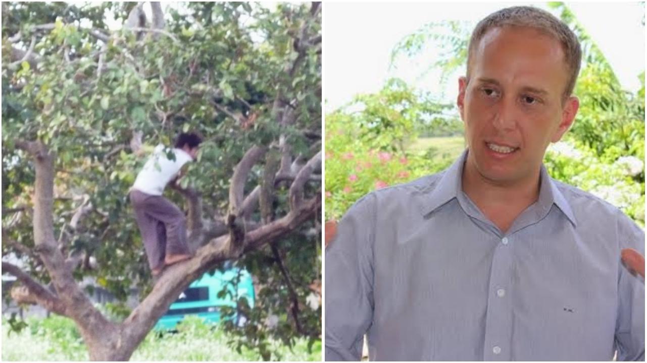 Vereador de Sorocaba subia na árvore descalço quando criança e pode ficar inelegível