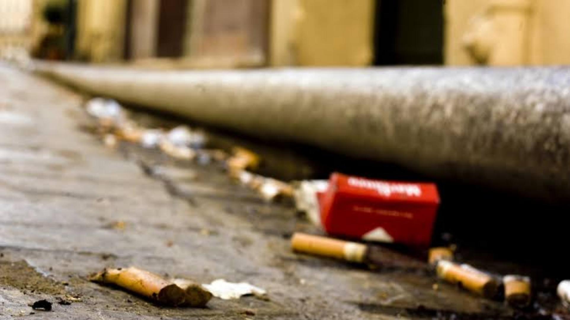 Câmara de SP aprova multa para quem jogar bituca de cigarro em ruas e calçadas