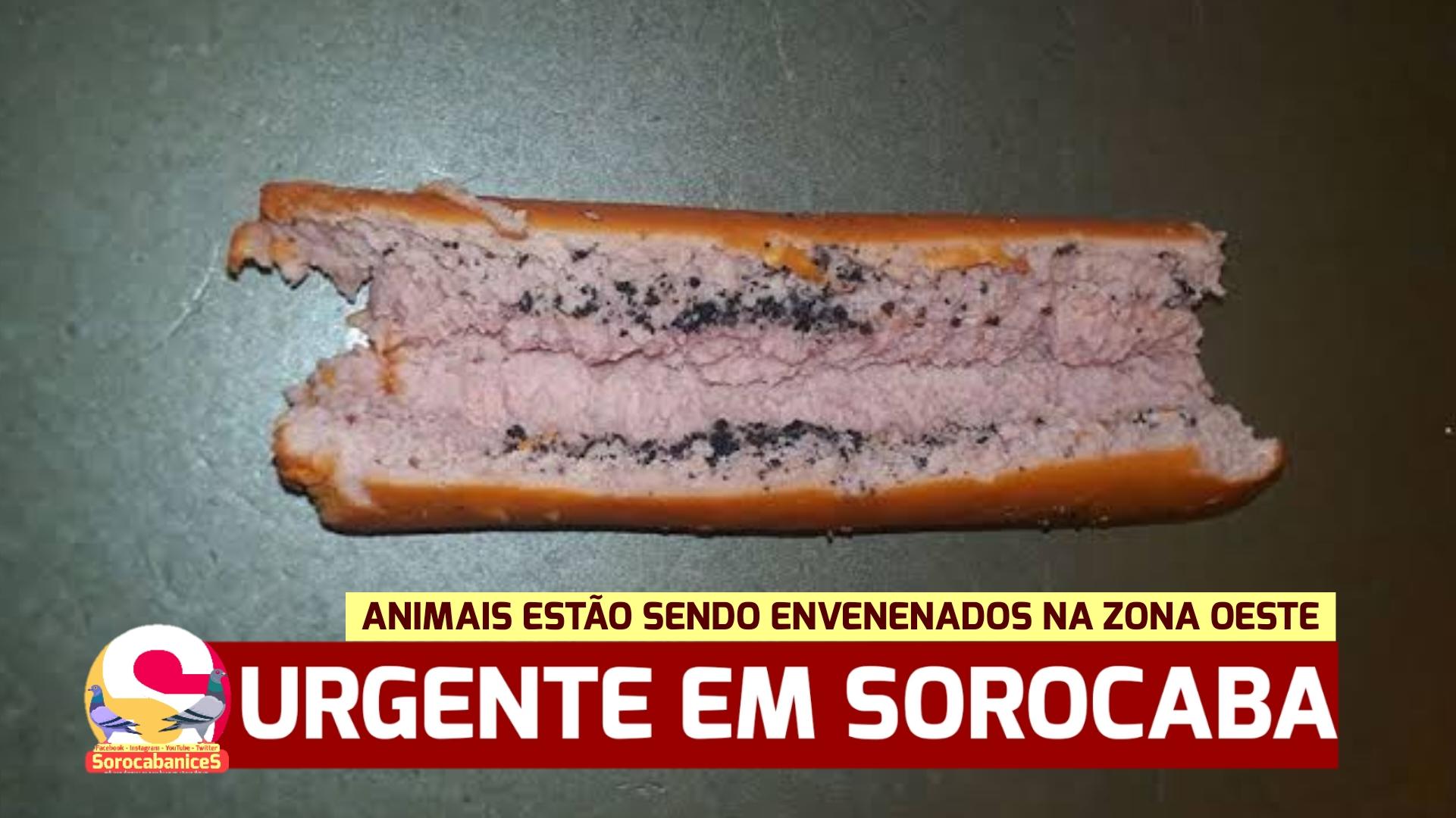 Gatos e cachorros estão sendo envenenados na zona oeste de Sorocaba
